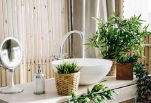 Photo of Plant Décor For Designer Washroom