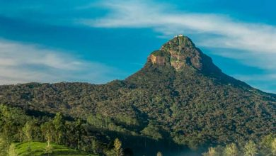 Photo of Adam's Peak In Sri Lanka: The Ultimate Guide To Climbing The Mountain